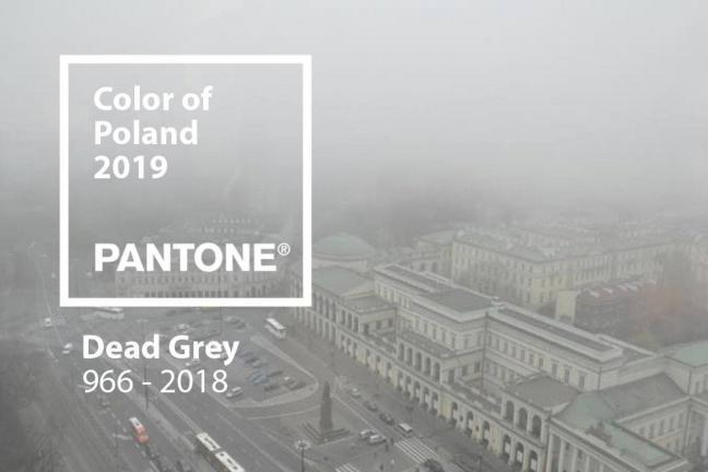 """Kolorem roku w Polsce powinien być """"Dead Grey"""""""