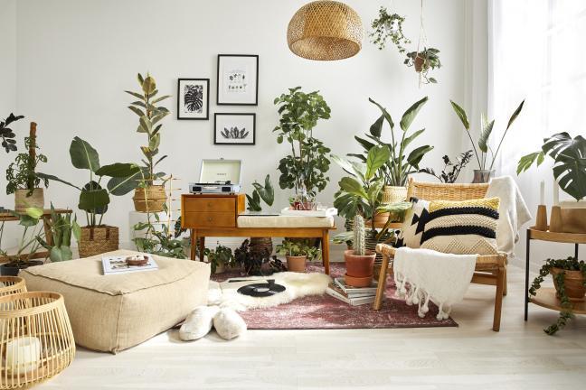 Dekoracja wnętrz – jak wykorzystać roślinne motywy w aranżacji domu?