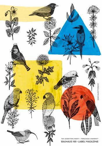 Kasia Walentynowicz – Tam, gdzie kwiaty i ptaki - teraz koła i kwadraty