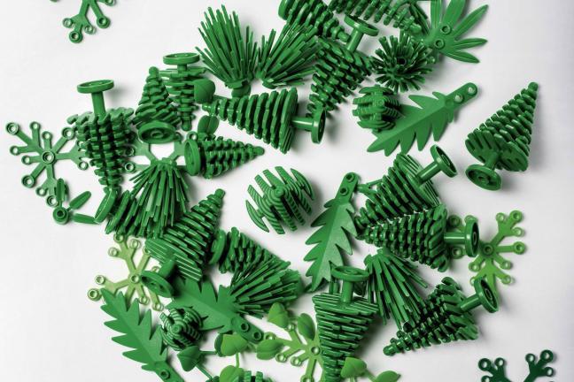 Lego z roślin