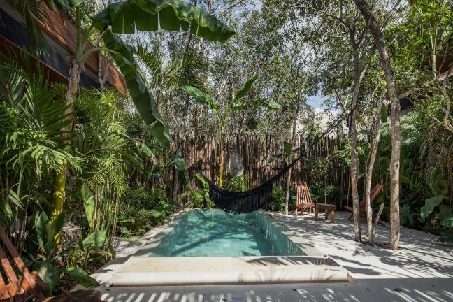 Wynajmę mieszkanie pod palmami