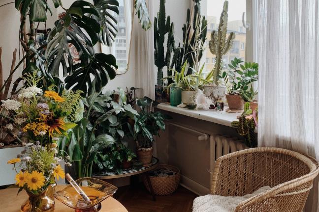 Zoom na: mieszkanie w stylu cluttercore