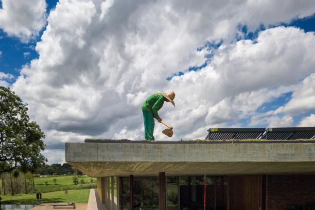 Trawnik na dachu