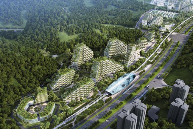 Zielone miasto