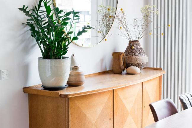 Drewno i kaktusy