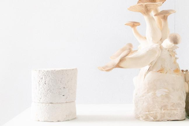 The French brand introduces packaging made of mycelium