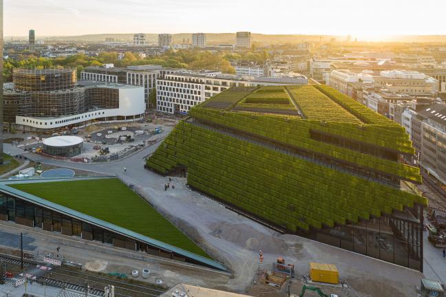 Zielony biurowiec w Düsseldorfie