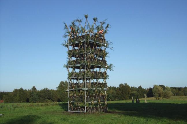 Pawilony zbudowane z drzew
