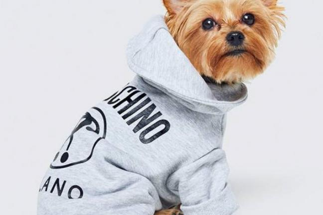 The first projects from the H&M x Moschino collection