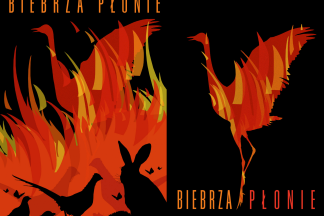 Andrzej Pągowski zaprojektował plakaty o tragedii w Biebrzańskim Parku Narodowym