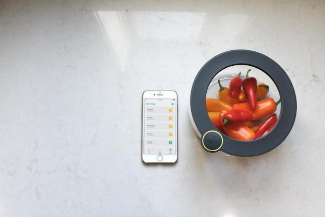 Pojemnik, który wskaże przeterminowane jedzenie