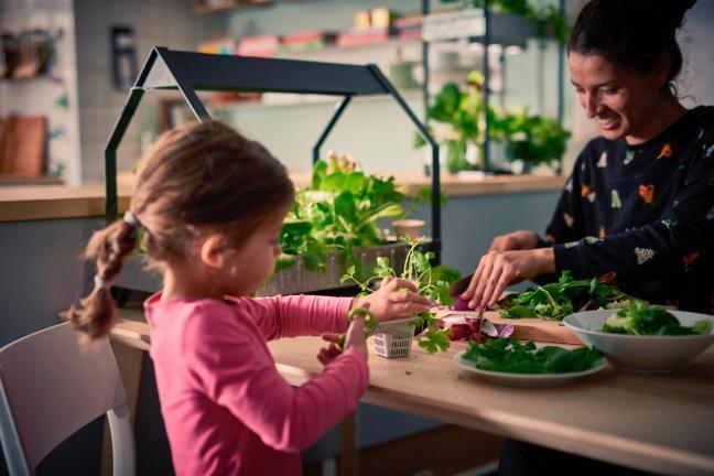 IKEA wycofa plastikowe produkty jednorazowego użytku ze swoich sklepów i restauracji