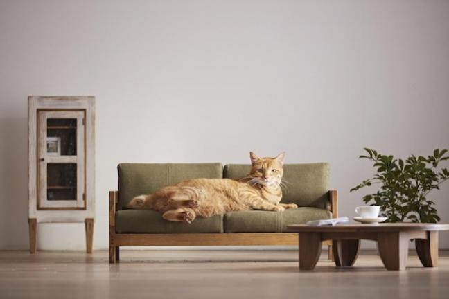 Mini meble dla kota