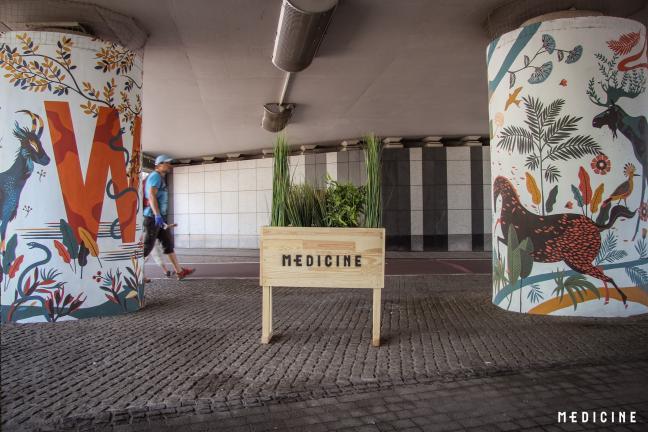 Odsłonięcie muralu WILD CITY w Krakowie!