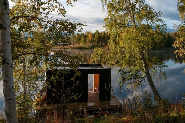 Sauna w środku lasu