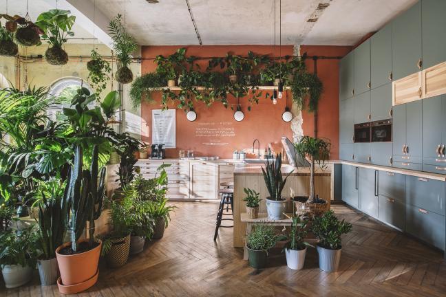 IKEA otwiera Dom Jutra w Szczecinie